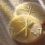 XXVI Niedziela Zwykła