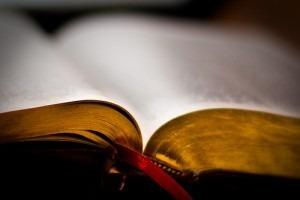 biblia_nowe